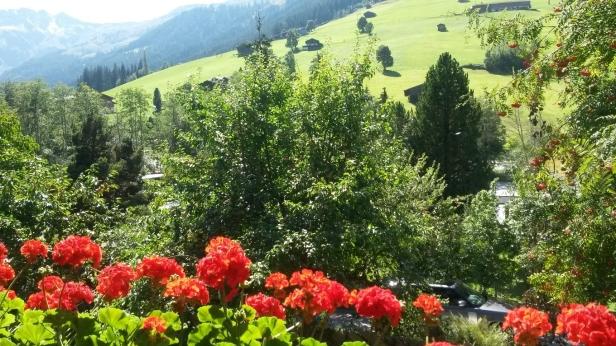 20180827_150148 Blumen Balkon Tirol verkleinert