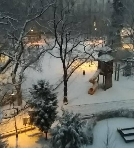 IMG_20200118_164215 Draschepark Winter